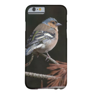 Chaffinch Barely There iPhone 6 Case