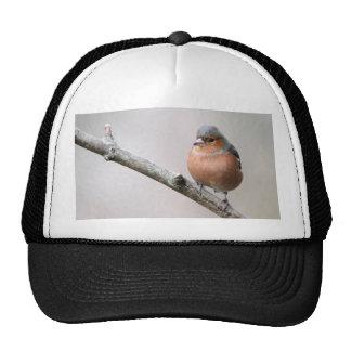 Chaffinch Cap
