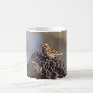 Chaffinch Coffee Mug