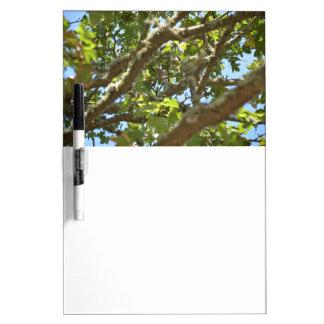 Chaffinch Dry Erase Whiteboards
