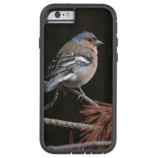 Chaffinch Tough Xtreme iPhone 6 Case