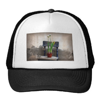 Chair and Flower Hat