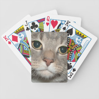Chairman Meow Playing Cards