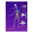 Chakra Structure and Function Poster
