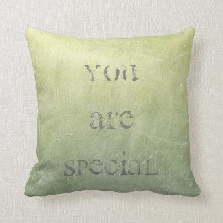 Chalkboard Cement Mint Green Grungy Gray Cushion