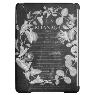 chalkboard scripts french botanical art ivy leaves