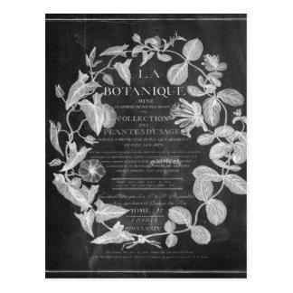 chalkboard scripts french botanical art ivy leaves postcard