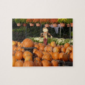 Challenging Autumn Pumpkins Mums Scarecrow Jigsaw Puzzle