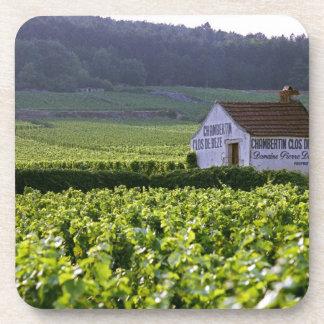 Chambertin Clos de Beze Grand Cru vineyard with Drink Coaster
