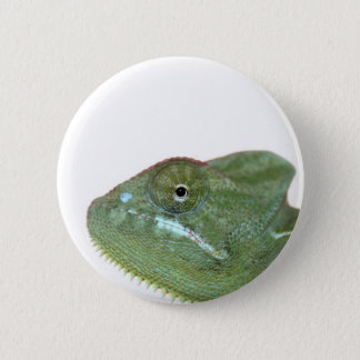chameleon 6 cm round badge