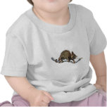 Chameleon Baby Shirt