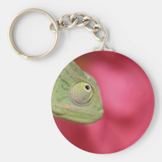 chameleon basic round button key ring