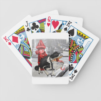 Chameleon Boston Terrier Bicycle Playing Cards