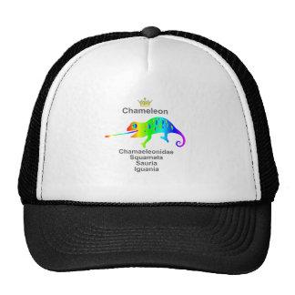 Chameleon Cap