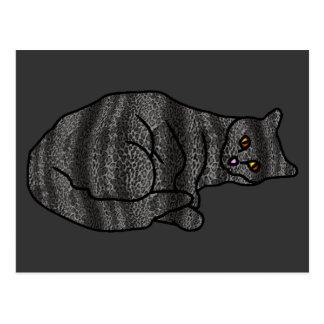 Chameleon Cat Postcard