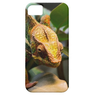 Chameleon coming forward barely there iPhone 5 case