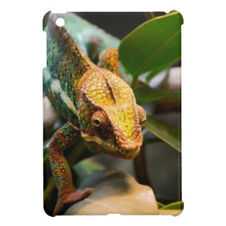 Chameleon coming forward case for the iPad mini