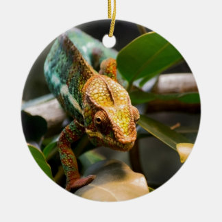 Chameleon coming forward christmas ornament
