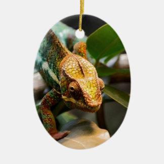 Chameleon coming forward christmas ornament