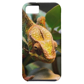 Chameleon coming forward iPhone 5 cases