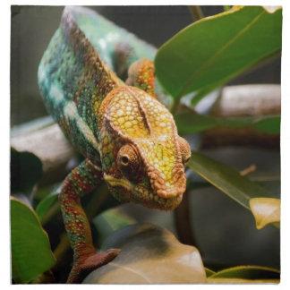 Chameleon coming forward napkin