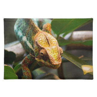 Chameleon coming forward placemat