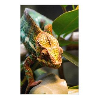 Chameleon coming forward stationery