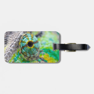 Chameleon eye luggage tag