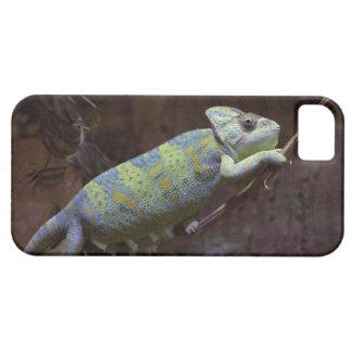 Chameleon iPhone 5 Case-Mate Case