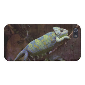 Chameleon iPhone 5 Savvy Case Case For iPhone 5/5S