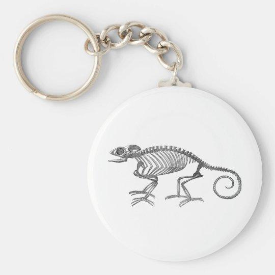 Chameleon Keyring Basic Round Button Key Ring