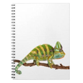 Chameleon Notebooks