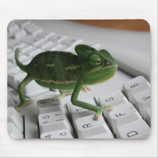 Chameleon on Keyboard Mouse Mat