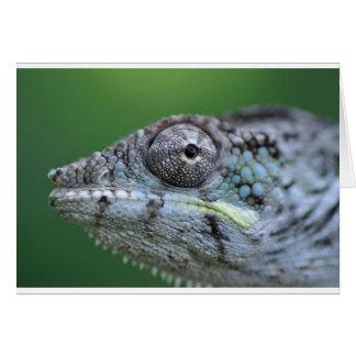 chameleon portrait card