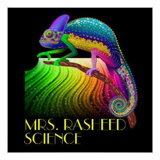 Chameleon / Science Teacher Poster