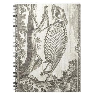 Chameleon Skeleton Illustration Notebook