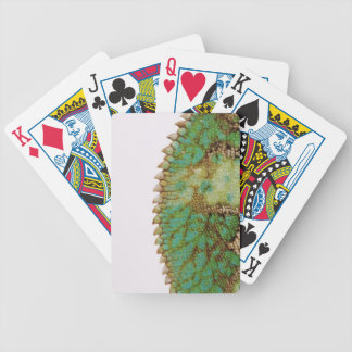 Chameleon skin change bicycle playing cards