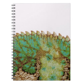 Chameleon skin change notebooks