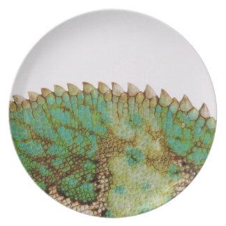 Chameleon skin change plate