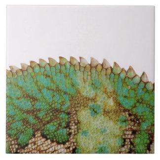 Chameleon skin change tile