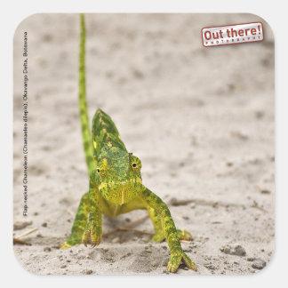 Chameleon Square Sticker