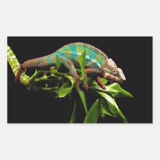 Chameleon Rectangular Stickers