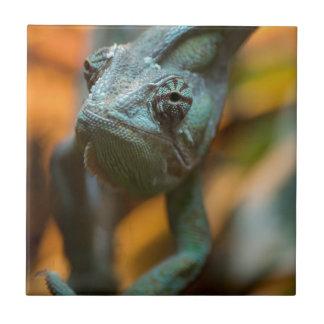 Chameleon Tile