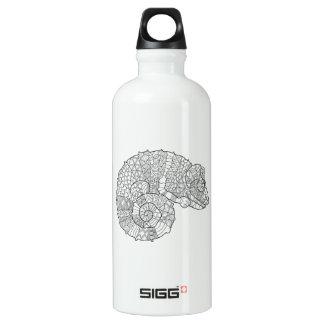 Chameleon Zendoodle Water Bottle