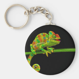 Chameleons Basic Round Button Key Ring