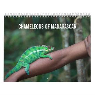 Chameleons of Madagascar Calendar