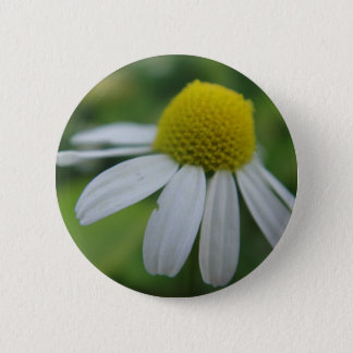 Chamomile bloom 6 cm round badge