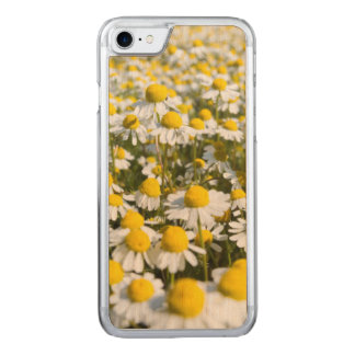 Chamomile Field, Hungary Carved iPhone 7 Case