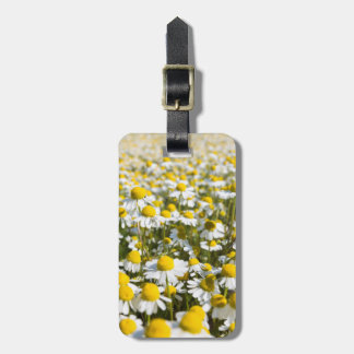 Chamomile Field, Hungary Luggage Tag