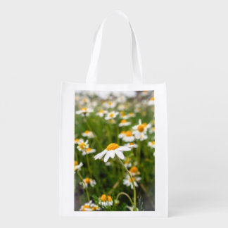 chamomile flowers bag